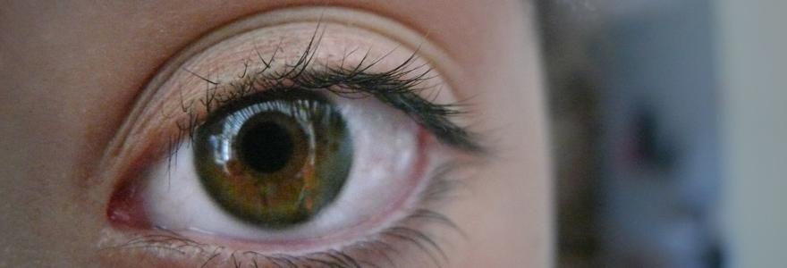 Cristallin de l'oeil