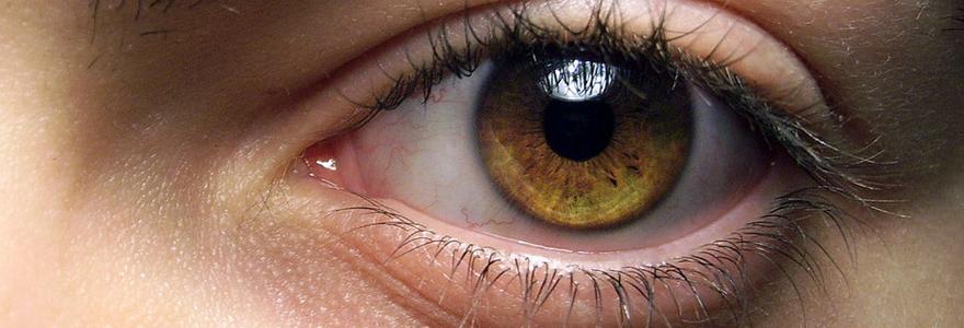 naissance de l'oeil