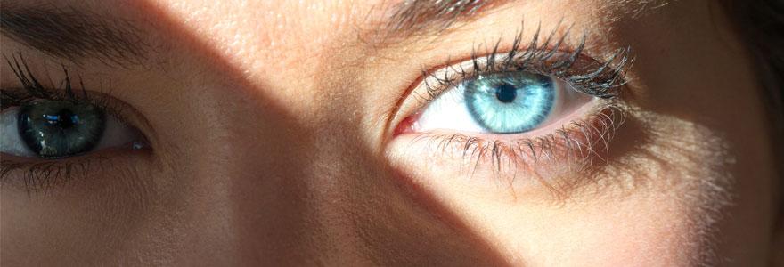 l'organe de la vue